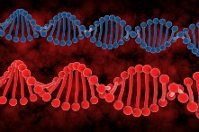 causes of fibromyalgia said to be related to defective gene