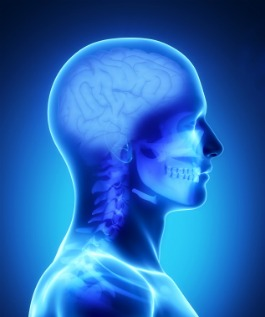 symptoms of fibromyalgia, 3d picture of brain